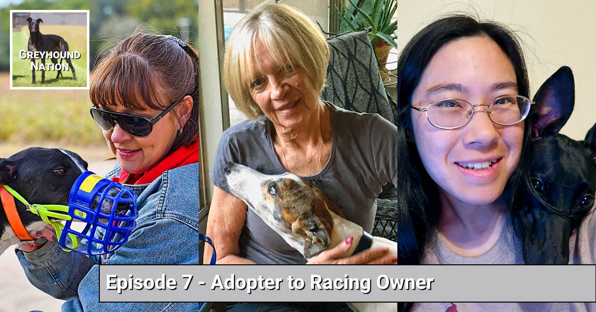 Adopter to Racing Owner