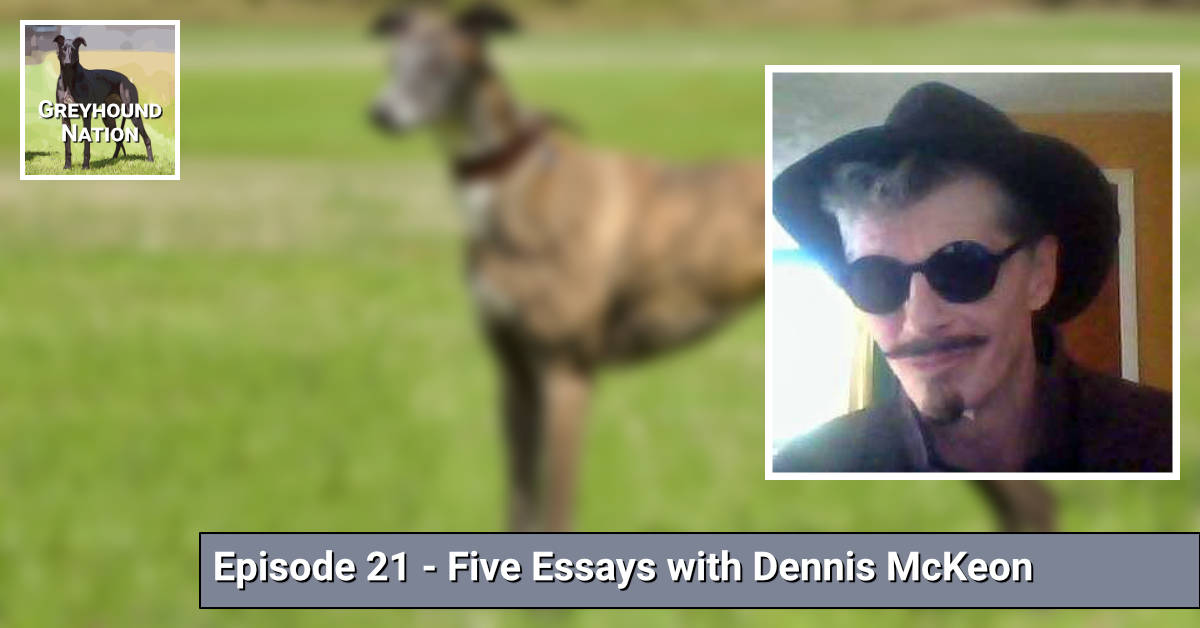 You are currently viewing Five Essays with Dennis McKeon